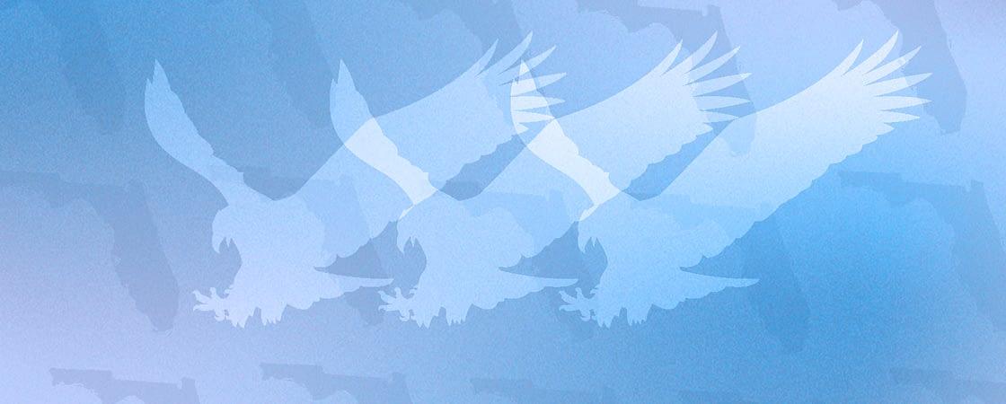 Legal Eagle blog graphic